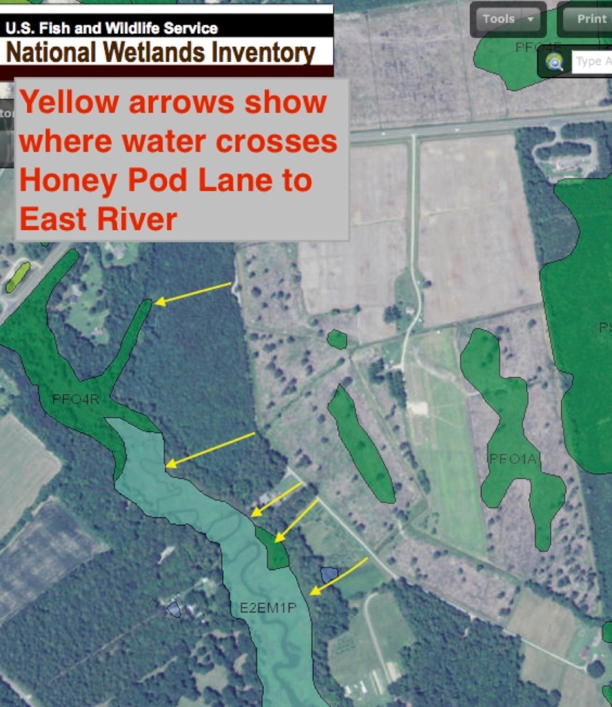Yellow arrows placed on National Wetlands Inventory map show runoff channels  crossing Honey Pod Lane from proposed site.